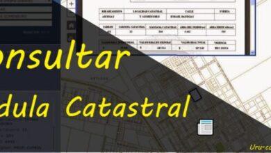 Photo of Consultar Cédula Catastral